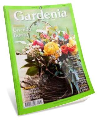 Gardenia | febbraio 2012