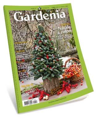 Gardenia December 2018