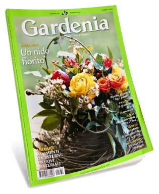 Gardenia February 2012