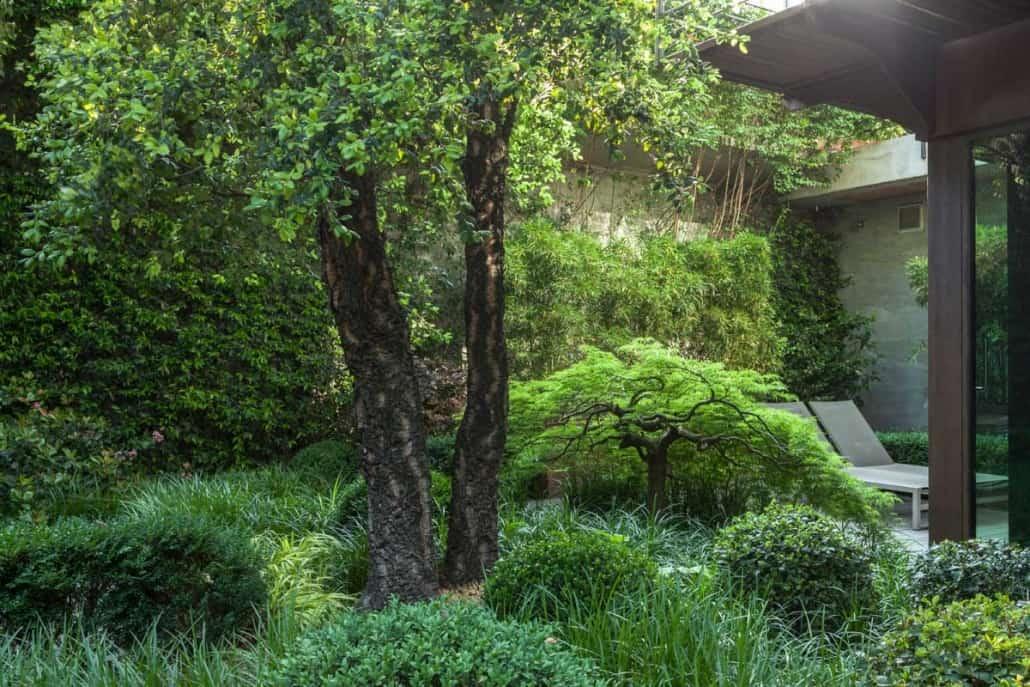 Realizzazione giardino in città