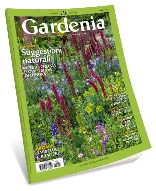 gardenia luglio 2019